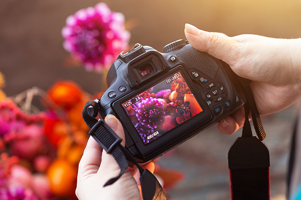 Course Image Photography for Beginners